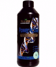 NULIFE POWER ACTIVE - ROOTING BACTERIA